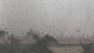 """""""龙舟水""""还没完!预计今天下午到夜间,全市大部有大雨局部暴雨降水"""
