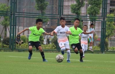 五华青少年足球赛收兵,这两个学校捧杯!
