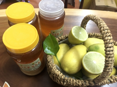 三创大赛项目丨香水柠檬:小柠檬 大产业