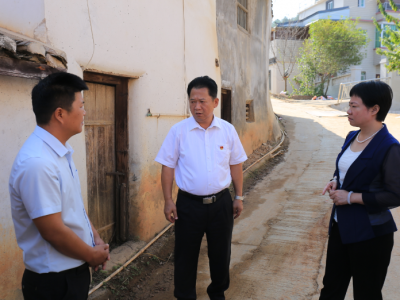 梅江区主要领导率队检查林风眠诞辰120周年纪念活动筹备工作
