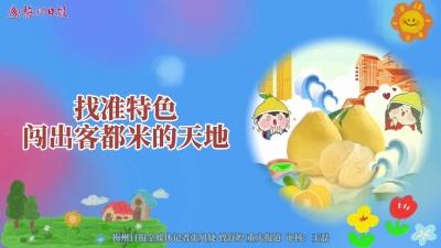梅州V视丨聚焦第十八届中国国际农交会梅州展区:找准特色 闯出客都米的天地