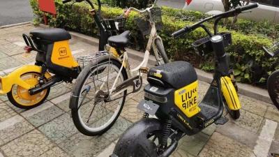 """多次无视""""禁投令""""?梅城街头又又又出现违规投放的共享单车!"""