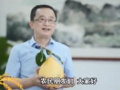 """市委书记话丰收  梅州市委书记陈敏为2021年中国农民丰收节""""打call"""""""